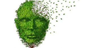 Groen gezicht wat uit elkaar valt