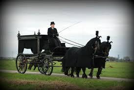Foto van een man in zwart pak op een koets met twee zwarte paarden ervoor